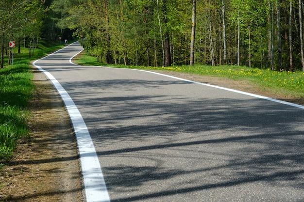 林道は晴れた日の森の中の良い舗装道路です。