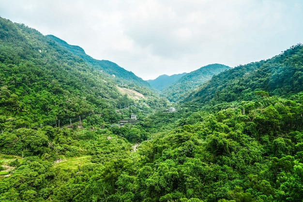 Forest at the taipei mountain, view from the maokong gondola at noon, taiwan.