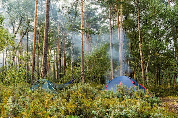 Forest tourist camp with tents and bonfire. camping, outdoor activities  concept