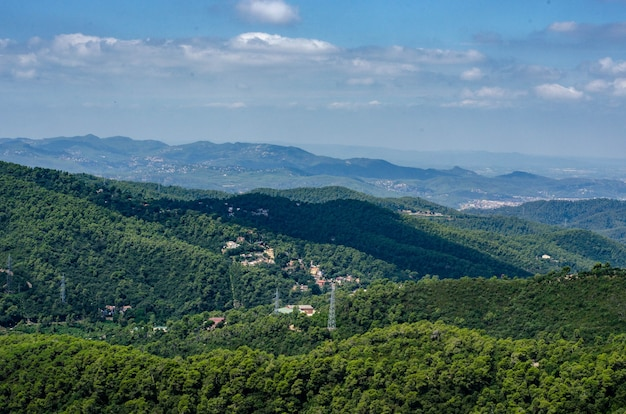 Forest view from the top of tibidabo mountain
