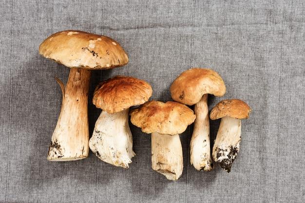 灰色の布の背景に森の白いキノコ。テーブルの上の新鮮な生菌。