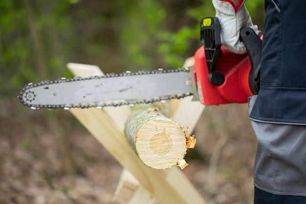 Forest worker in protective gloves saws tree trunk with the chainsaw