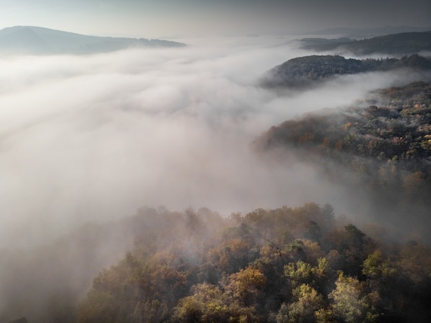 Forested hills surrounded by fog under a cloudy sky