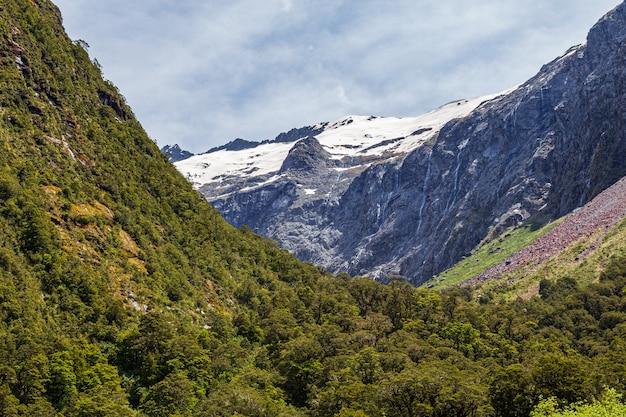 눈 덮인 산과 언덕 사이의 숲이 우거진 계곡 뉴질랜드