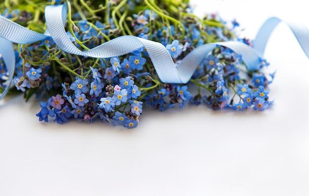Незабудка цветы с голубой лентой на белом