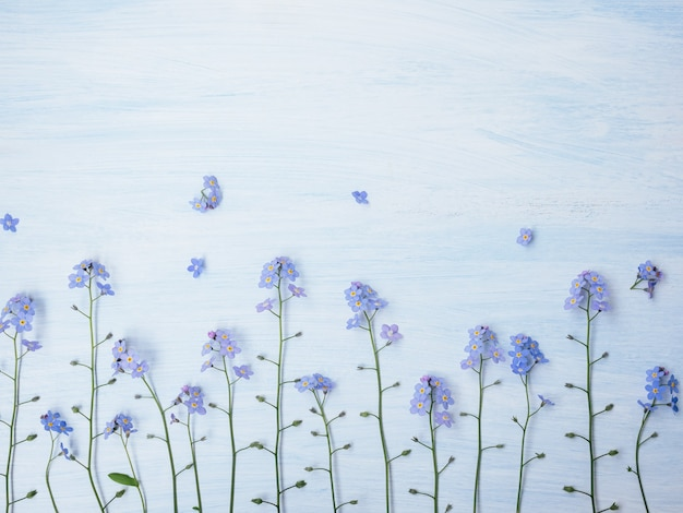 Forget-me-not on wooden background