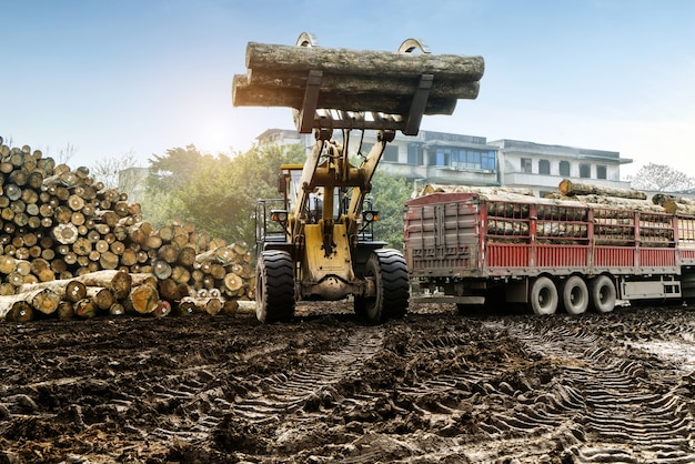 Forklift truck grabs wood in a wood processing plant