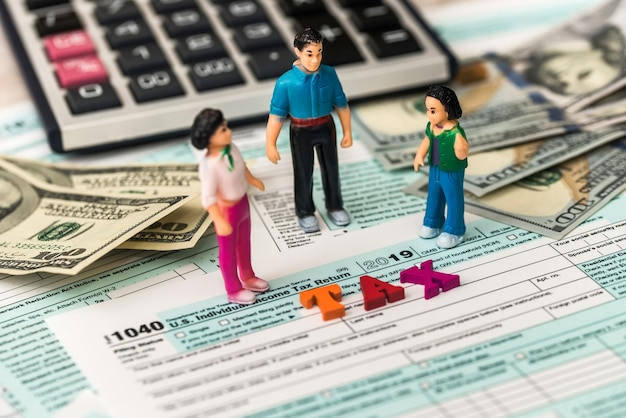 Form of income tax return of individuals
