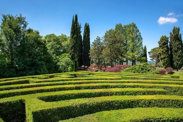 Формальная коробка или лабиринт из живой изгороди buxus в саду или парке с видом на тропинки лабиринта и далекие деревья под солнечным голубым небом