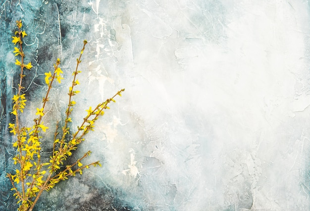 Forsythia blossoming twigs spring flowers watercolor background