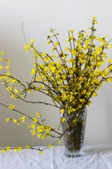 가벼운 벽의 배경에 대해 크리스탈 꽃병에 개나리 꽃다발.