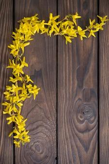 어두운 나무 표면에 개나리 꽃