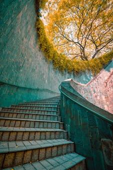 Винтовая лестница в дневное время в fort canning park, сингапур. винтажный тон