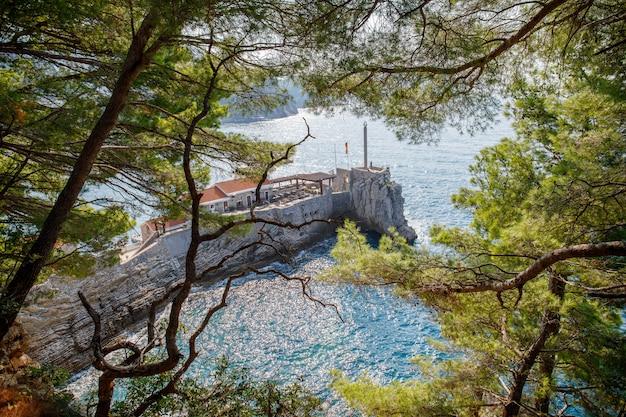 Укрепленный скалистый утес около города петровац в черногории через ветви сосен в адриатическом море