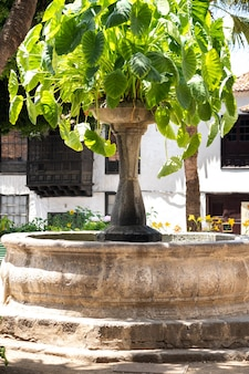 The fountain in the square of the old town of icod de los vinos on the island of tenerife.spain