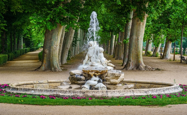Фонтан с водой в общественном парке с большими деревьями на заднем плане