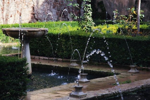 Fountains in the garden