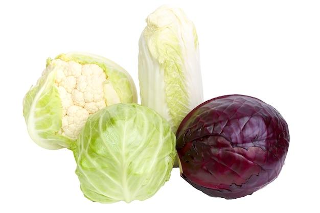 白い背景で隔離の4種類のキャベツ