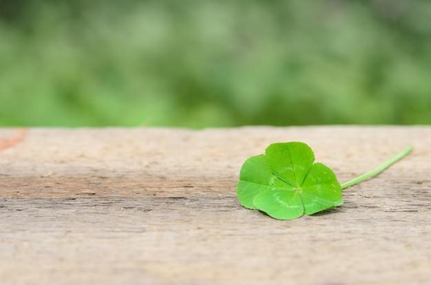 粗い木の表面に幸運をもたらす四つ葉のクローバー。セレクティブフォーカス。