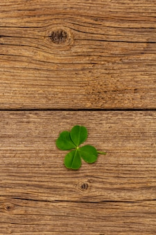 네 잎 클로버, 빈티지 나무 보드에 신선한 식물