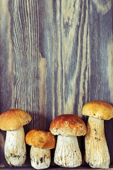 Four mushrooms boletus close up on wooden background.