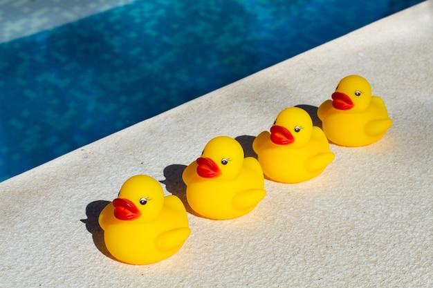 Четыре желтых резиновых утки подряд возле бассейна