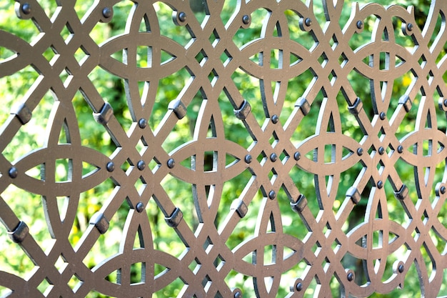 A fragment of an iron ornamental lattice in a city park
