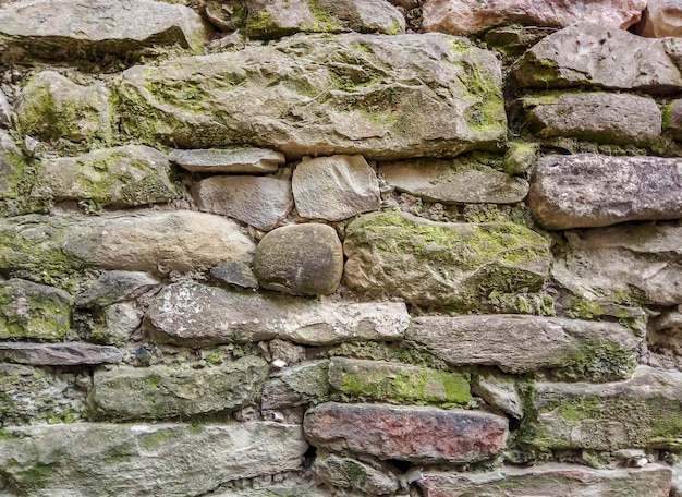 Фрагмент стены из дикого камня, покрытого мхом и плесенью