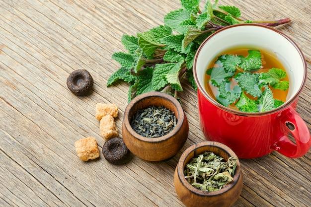 Ароматный свежий травяной чай с мелиссой в стеклянной чашке