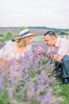향기로운 라벤더. 여름에 라벤더 덤불의 필드입니다. 행복한 성숙한 아름다운 커플, 남자와 여자, 라벤더 꽃을 수확하고 향기를 즐기는