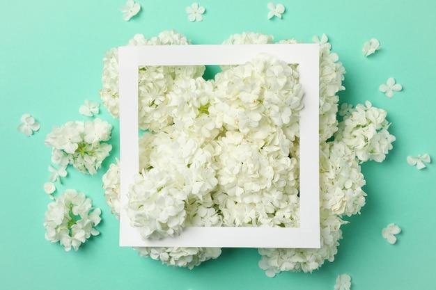 Рамка и красивые цветы гортензии на фоне мяты