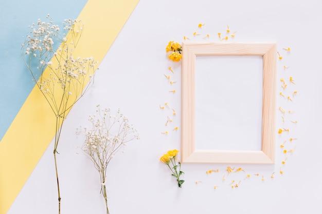 Рамка и цветы