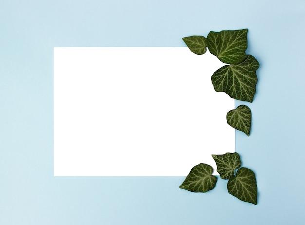 青い背景にフレームと緑の葉。紙の空白。