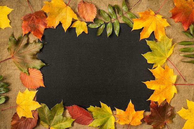 Frame of autumn leaves on chalkboard background
