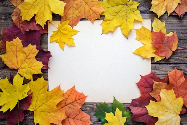 Frame of autumn leaves and a white sheet of paper on a wooden plank background