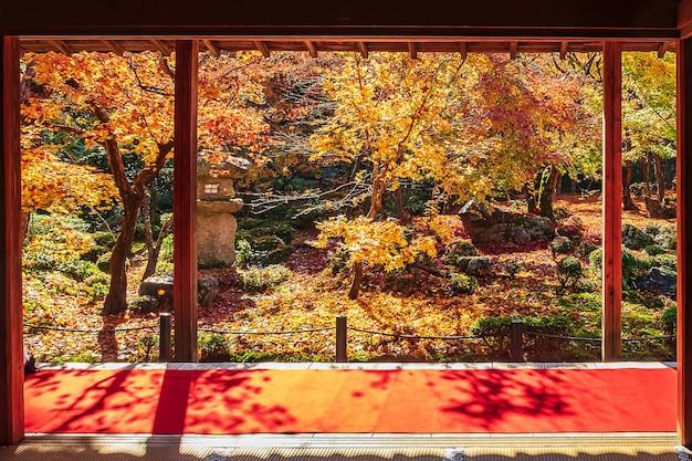 日本庭園の木製パビリオンと美しいカエデの木、京都の圓光寺のレッドカーペットの間のフレーム。画期的で秋の季節に有名