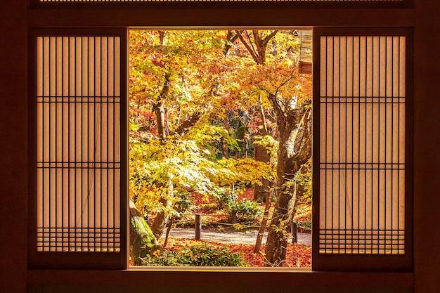 일본 교토 엔코지 일본 정원에 있는 나무 창문과 아름다운 단풍나무 사이의 틀. 가을 시즌의 랜드마크이자 유명한