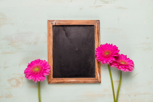 Frame blackboard decorated gerberas