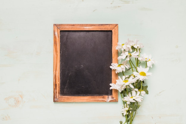 Frame blackboard with camomiles