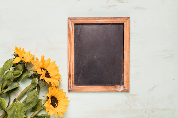 Frame blackboard with sunflowers