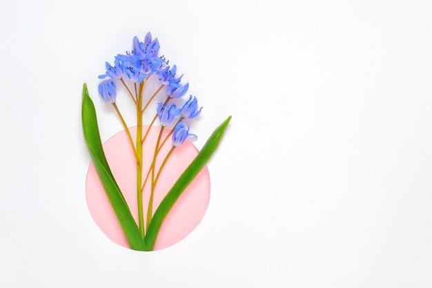 白い背景の上のスノードロップの花で作られたフレームの境界線
