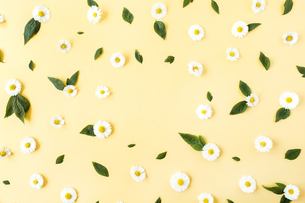 노란색 표면에 흰색 카모마일 데이지 꽃 패턴의 프레임 테두리