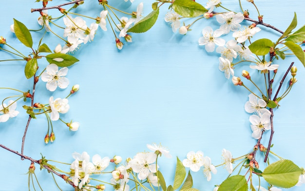 Frame border of spring blossom on blue background. springtime flowers with place for text. mother's day concept