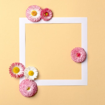 Frame border with daisy flowers on pastel yellow background.
