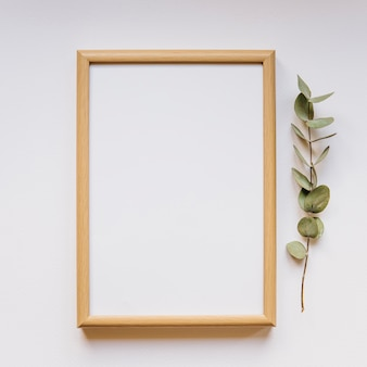 Frame next to branch