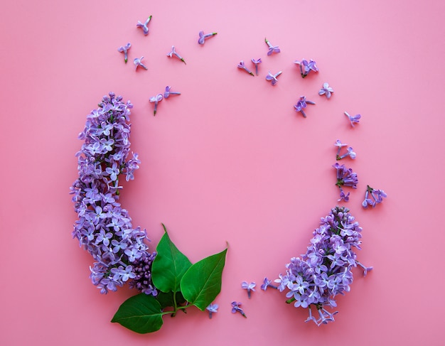 Frame of branches and flowers of lilac in the shape of a cicle