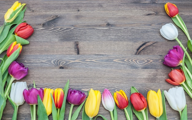 Frame of colourful tulips on a wooden background.