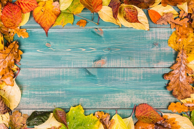 Frame composed of colorful autumn leaves on green wooden background