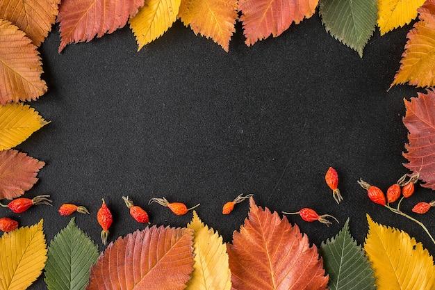黒い表面上の秋の葉で構成されるフレーム