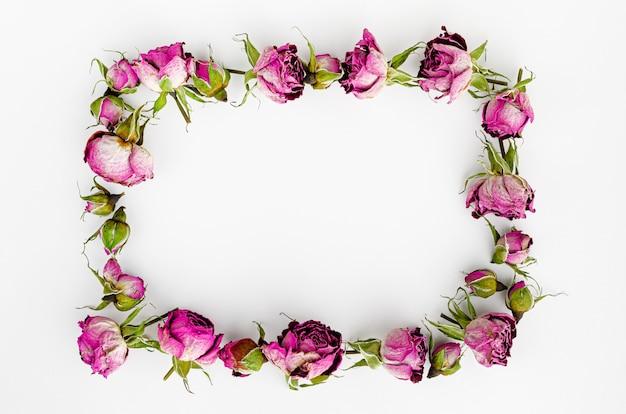 Рамочная композиция из сухих цветов на белом фоне